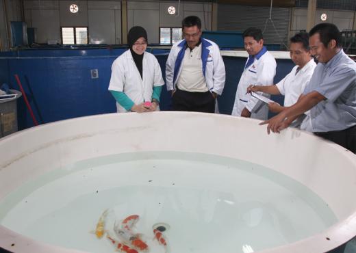 fish-ecosystems